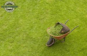 Grass, garden waste