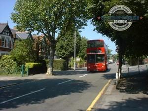 Highams-Park-The-Avenue