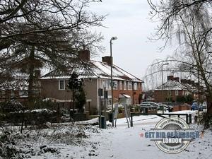 Mottingham-Winter